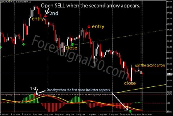 accurate forex signal